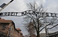 Auschwitz documentario