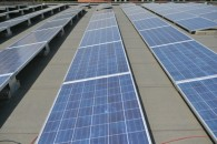 nicola zingaretti energia solare (15)