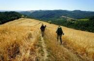 cammino-di-francesco-bufalini