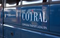 nuovi bus cotral nz